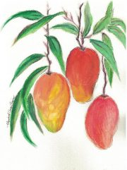 mangoes-betty-ann-quirino-notecards