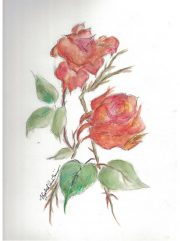 roses-betty-ann-quirino-notecards